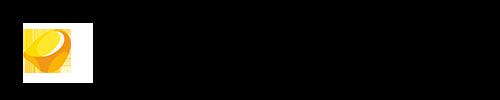 EsseSystems